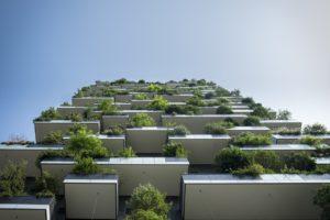 zielone bloki